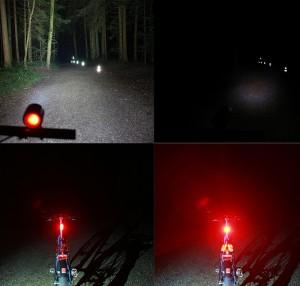 Test auf 50 Meter in unbeleuchtetem Waldstück: Die Unterschiede sind frappant.