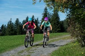 Leichtes Minus: Der Mountainbike-Verkauf bliebt praktisch gleich hoch (-2.2%). Zudem zeigt sich ein Trend zu 29er-Bikes.